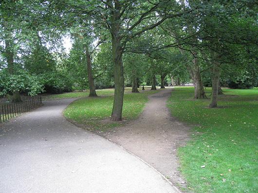 desire_path